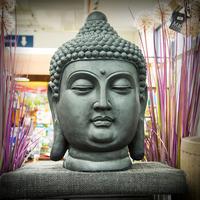 Buddha Head - 60cm