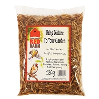 Mealworms 120g