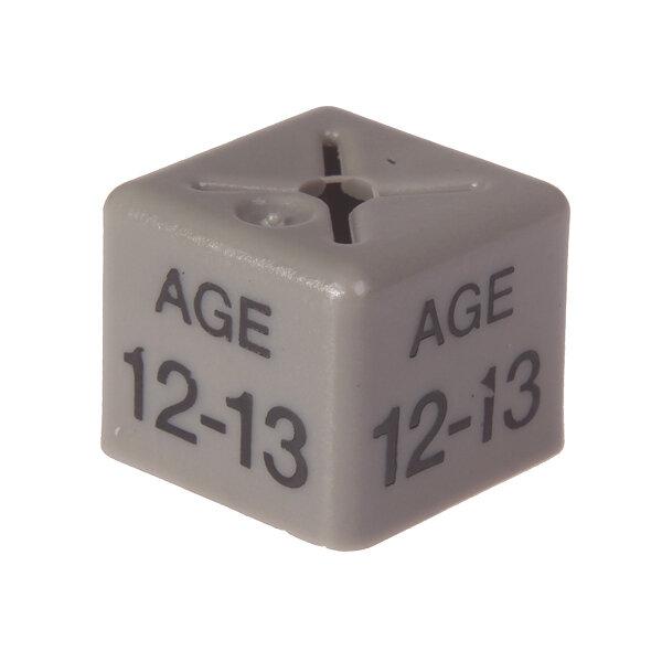 SHOPWORX CUBEX 'Age 12-13' Size cubes - Grey (Pack 50)