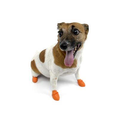 Pawz Dog X Small (12)