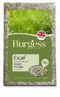 Burgess Excel Forage - 1kg x 1