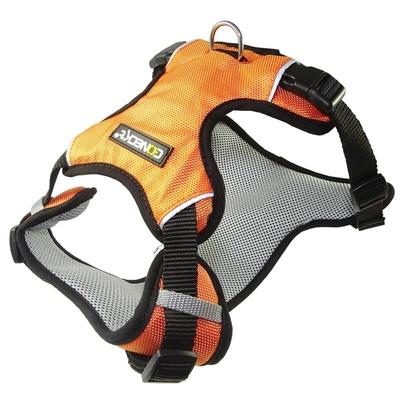 SPORT Harness Orange Large 80-105cm