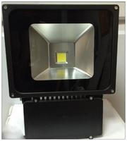 Illumina FL100 Floodlight Cool White 100W LED