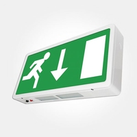 LED Maintained Emergency Exit Box Sign