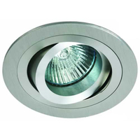 ONE Light Polished Brass Round Adjustable Downlight