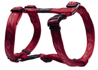 "Rogz Alpinist Red Large (K2) H-Harness 18"" - 29½"" x 1"