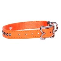 "Rogz Luna Orange Small Buckle Collar 9"" - 11½"" x 1"