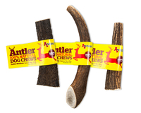 Antos Deer Antlers - Medium x 1