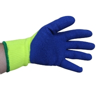 Arctic Polar Glove Large (WT1014/2L)