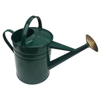 GALVANISED WATERING CAN 9 LTR GREEN PAINTED