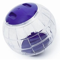 Fuzzballs Playball Race - Small x 1