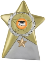 15cm Gold Star Plaque (Gold & Silver) | TC39