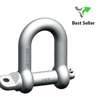Pewag Safety Shackle SSWI | Stainless Steel