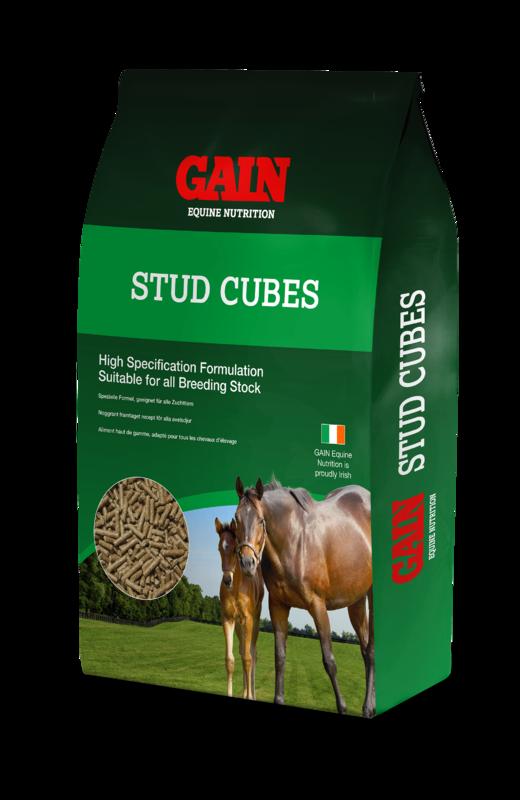 Gain Stud Cubes 25kg