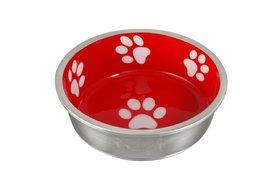 Cat Feeding Dishes