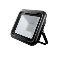 Robus Remy 50W LED Floodlight IP65 4000k