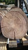 Driftwood Stepping Stone STONEMARKET