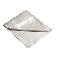 Poly Dust Sheet 12x15'  (WT344)