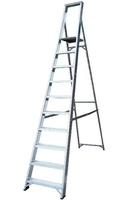 Lyte Class One - 12 Step Platform Ladder