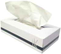 Vertu Facial Tissue 100's Ctn 48