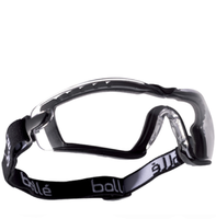 Bolle Cobra (strap + foam version) Clear Anti-scratch, Anti-fog, Platinum goggles