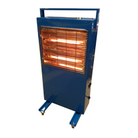 RG308 Electric Infrared Heater