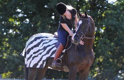 Riding Rug Zebra, 125/S