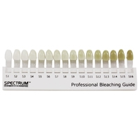 DENTSPLY - SPECTRUM SHADE GUIDE