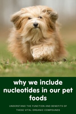 Why we include nucleotides in our pet food