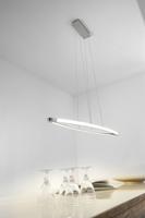Paul Neuhaus Bailee Warm White 2 x 21W LED Linear Pendant | LV2002.0014