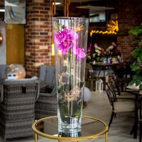 Phalaenopsis Purple in Vase
