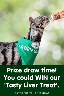 Would you like to WIN our Tasty Liver Treat for your pet?