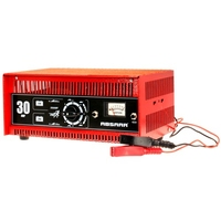 Professional 30 Amp Battery Charger