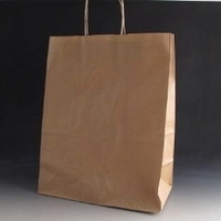 Large brown paper bag