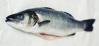 Frozen Whole Sea Bass Gilled & Gutted (600-800g)-Approx. 2kg