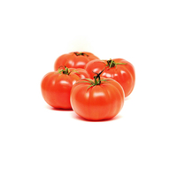 Beef Tomatoes BBB (Class 1) (kg)