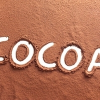346.11 COCOA POWDER 10-12% - 5KG