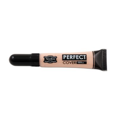 Perfect cover Mineral Concealer 1