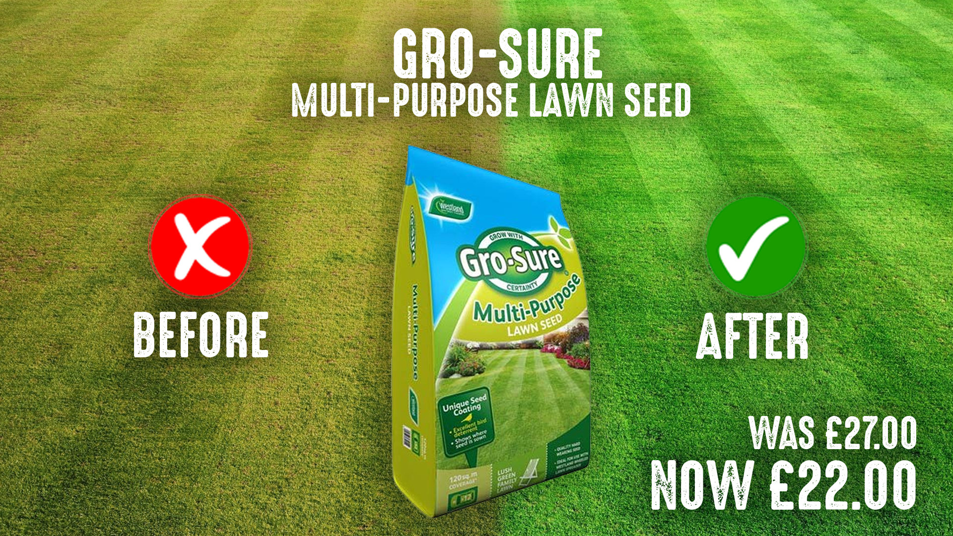Gro-Sure Lawn Seed