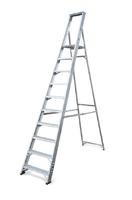Lyte Class 1 10 Step Platform Ladder