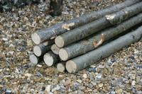 2.44m Chestnut Rustic Poles 38-50mm