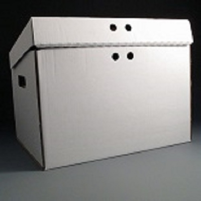 Archival file storage box