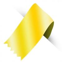 3MM FLAT ELASTIC GOLD BRAID 100YDS (91.4mtr)