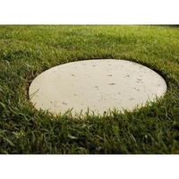 OVAL STEPPING STONE