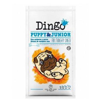 2x1 Dingo Puppy & Junior cachorros y perros jóvene