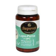 Lupo-Perna + OPC