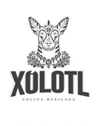 XOLOTL COCINA MEXICANA