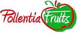 POLLENTIA FRUITS