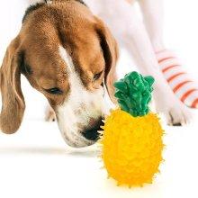 Juguete para perros en forma de Frutas