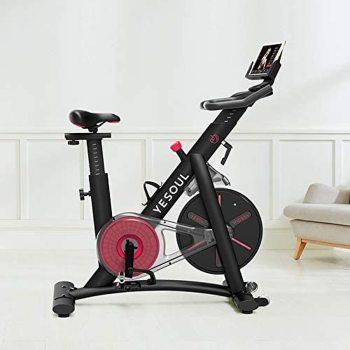 Bicicleta Spinning Indoor Xiaomi